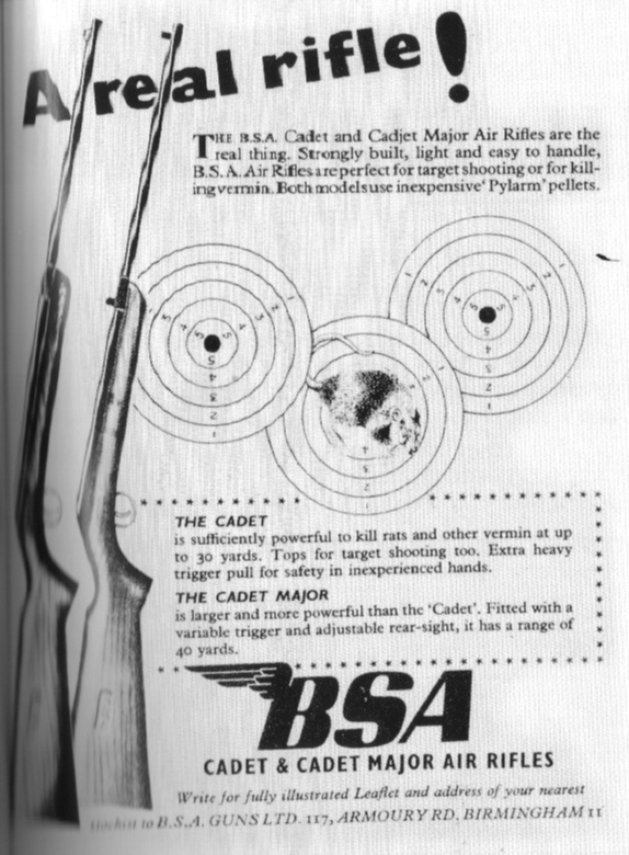 [Image: air-rifle.jpg]